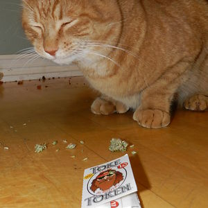 """Elliott Gets """"nip"""" From His Auntie Linda (or As We Like To Call Her, His Dealer) Each Christmas."""