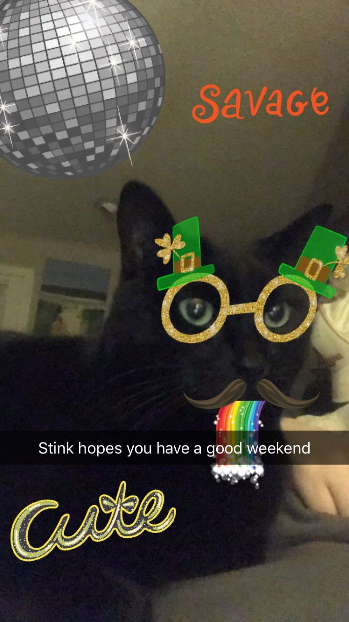 Stink Got Kinda Turnt On St. Paddy's Day