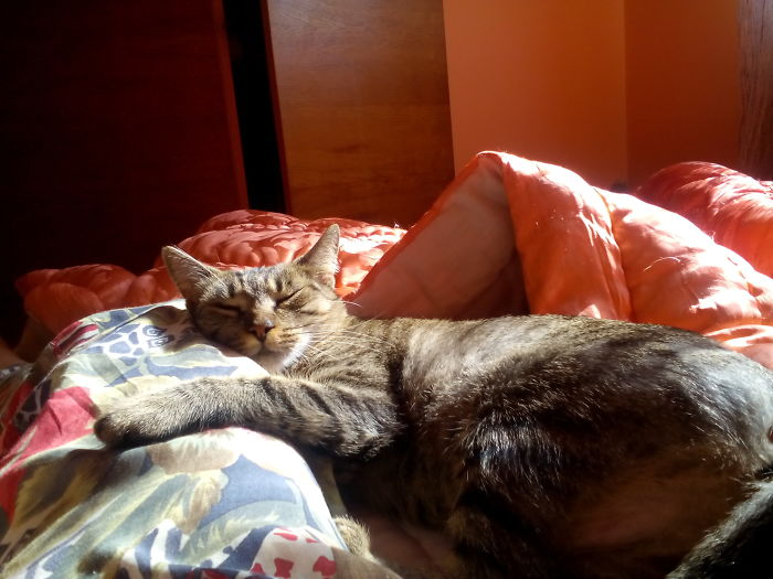 O Human.. I Love You.. And I Love The Sun, But I Love You More Than The Sun.. —-( I Hope She Is Thinking This Because That`s My Leg There)