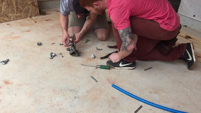 Saving A King Snake Of Duct Tape (Time Lapse)