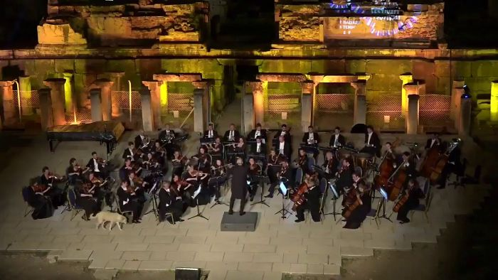 Stray Dog Totally Steals The Show Of The Vienna Chamber Orchestra