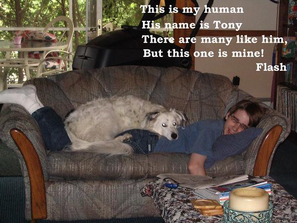 He's My Human