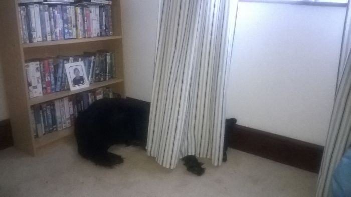 """Last One From Me (coz I Could Do Loads) Bailey""""hiding"""""""