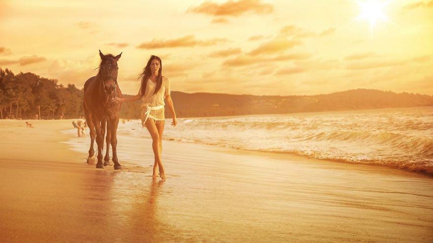 Where The Wild Horses Run