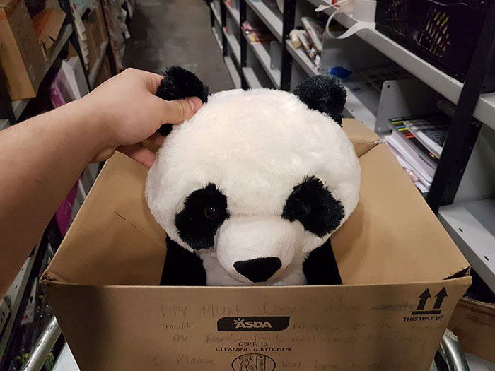boy-write-note-buy-stuffed-panda-leon-ashworth-2