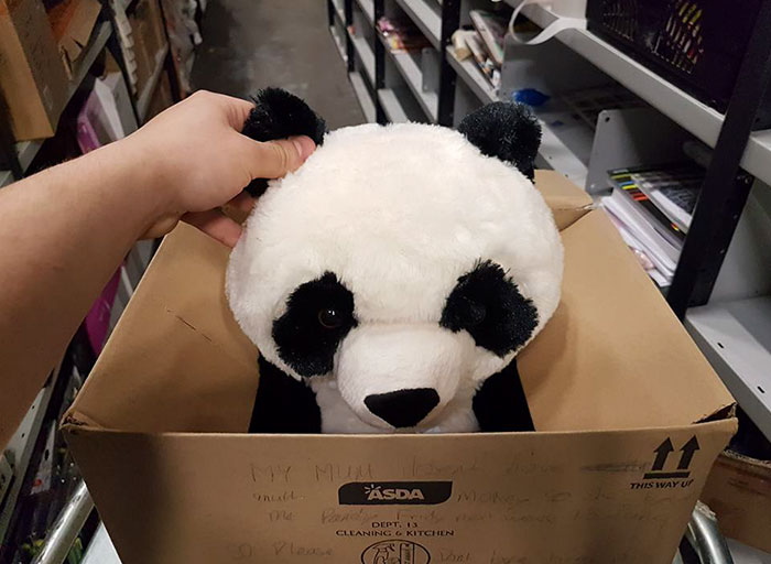 Boy Leaves Heartbreaking Note On Toy Panda Because His Mom Couldn't Afford It