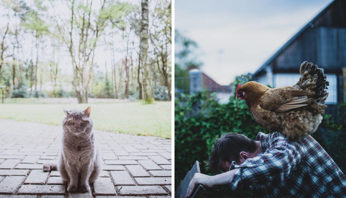 Meet All The Pets I Met While Living With Other People During A Year