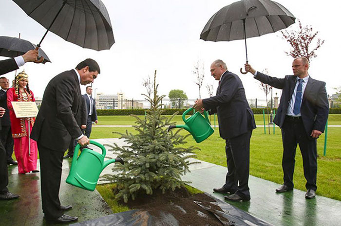 Belarus President Alexander Lukashenko Watering Trees In The Rain