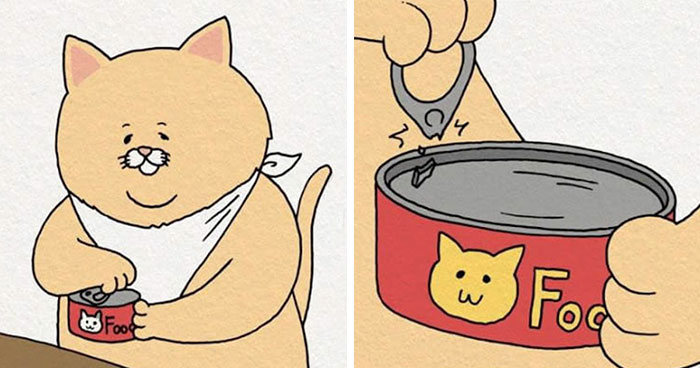 8 Chubby Cat's Food Fails That Are So Painfully Relatable It's Hilarious