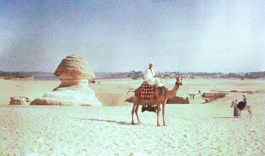 Sphinx And Camel, 1913