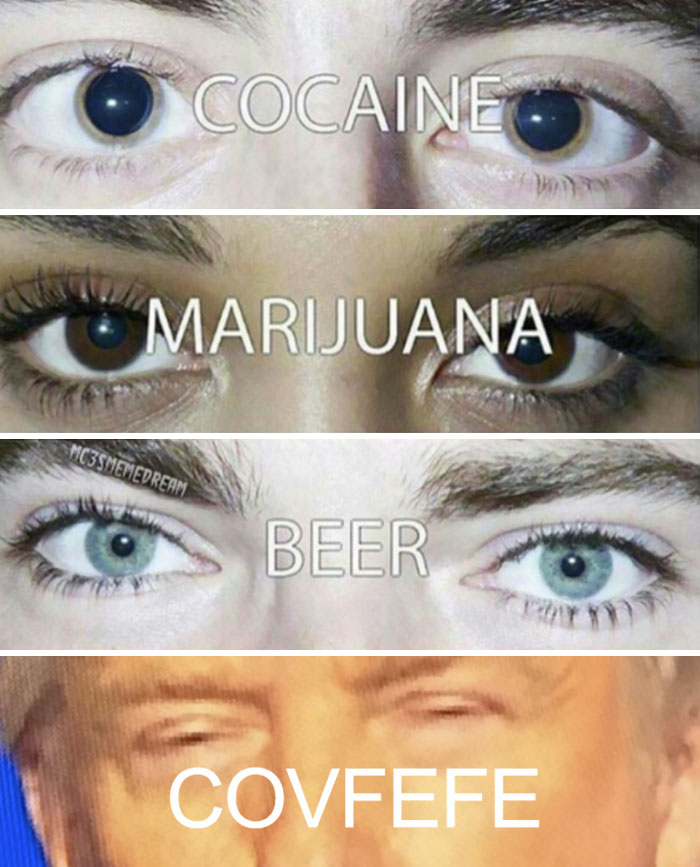 [Image: funny-covfefe-reactions-donald-trump-105...f__700.jpg]