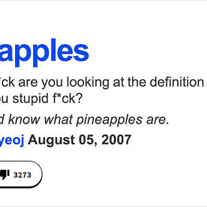Funniest definitions on urban dictionary