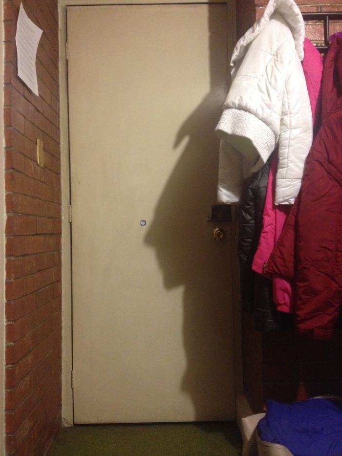 The Shadow Of My Jacket Looks Like A Mayan King.