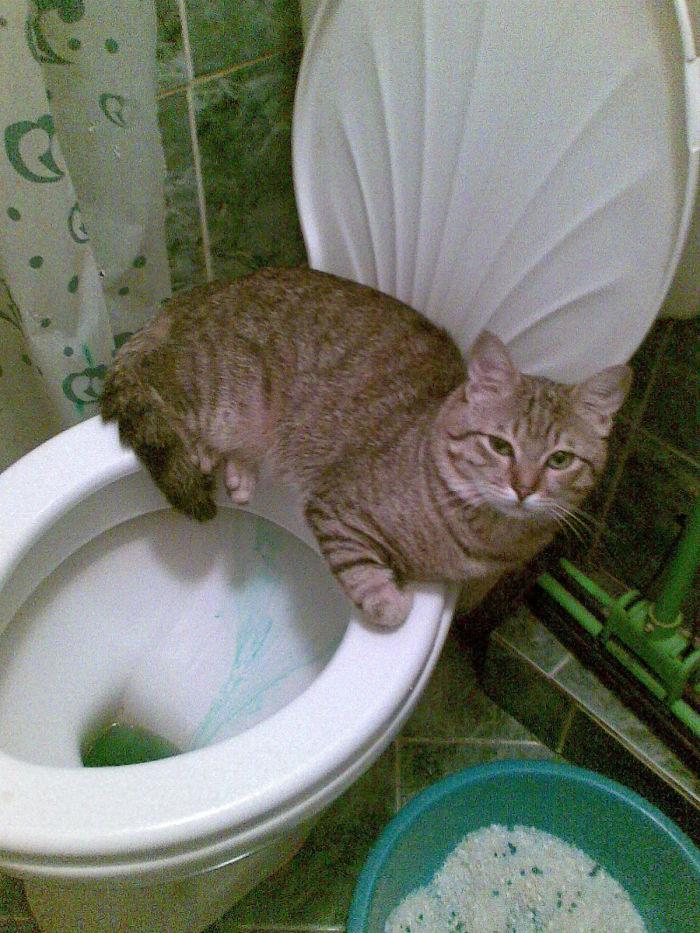 Sólo va a sentarse aquí, K?