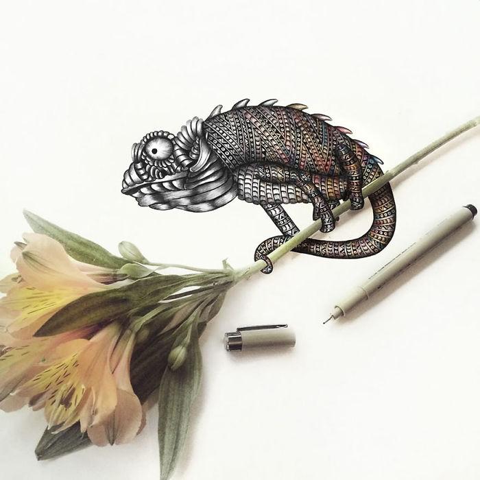 Intricate-animal-drawings-faye-halliday