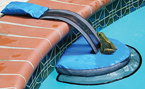Este genial invento salva a los animales de morir ahogados