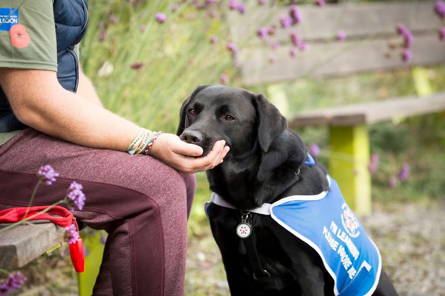 Assistance Dogs Charity Category 3rd Place Winner Julie Morrish, UK