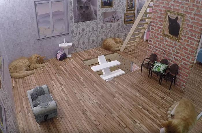 kittens-dollhouse-keeping-up-with-the-kattarshians-7