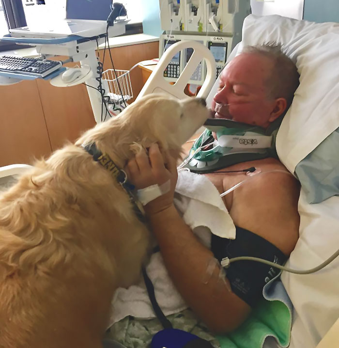 Dog Saves Owner's Life By Lying On Him For Nearly 24 Hours In Freezing Conditions