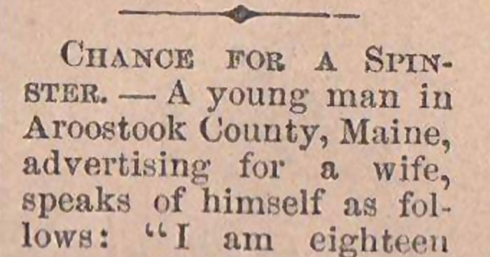 18-Year-Old Guy Is Looking For A Wife In 1865 And His Newspaper Ad Will Make You Want To Marry Him Now