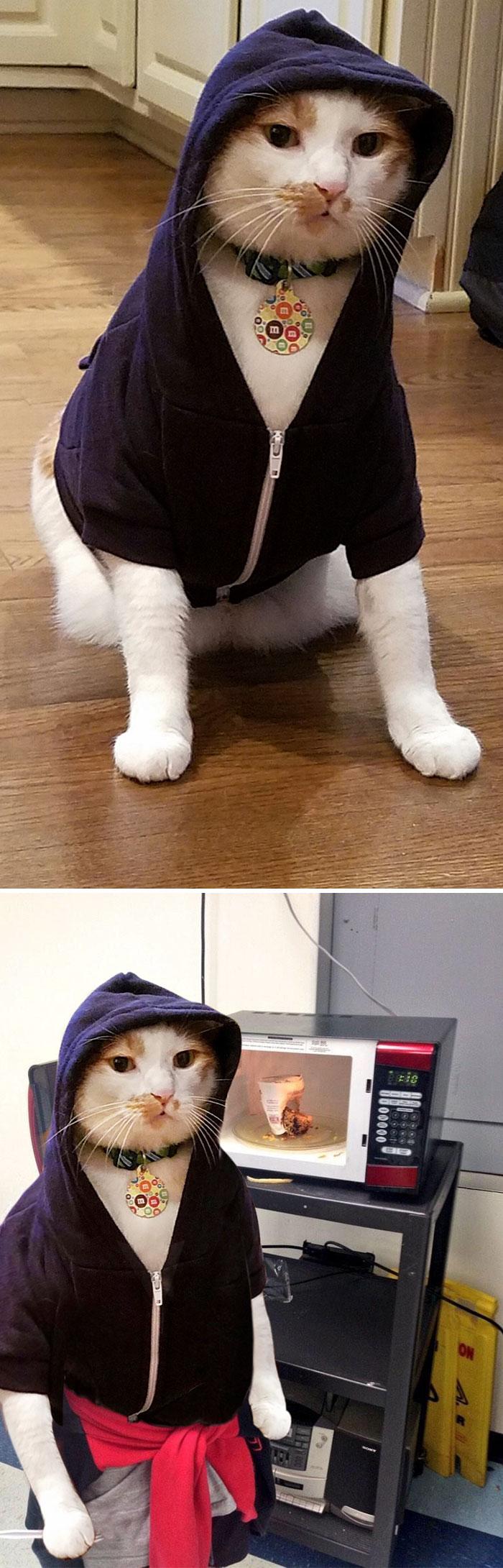Marvin Wearing A Hoodie