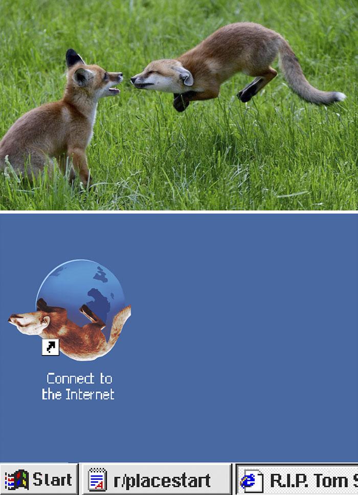 This Fox, Mid-jump