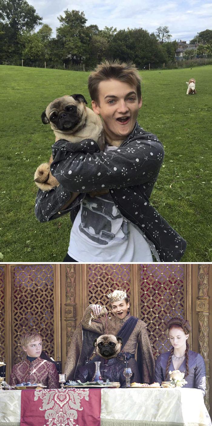 Joffrey Hugs Pugs