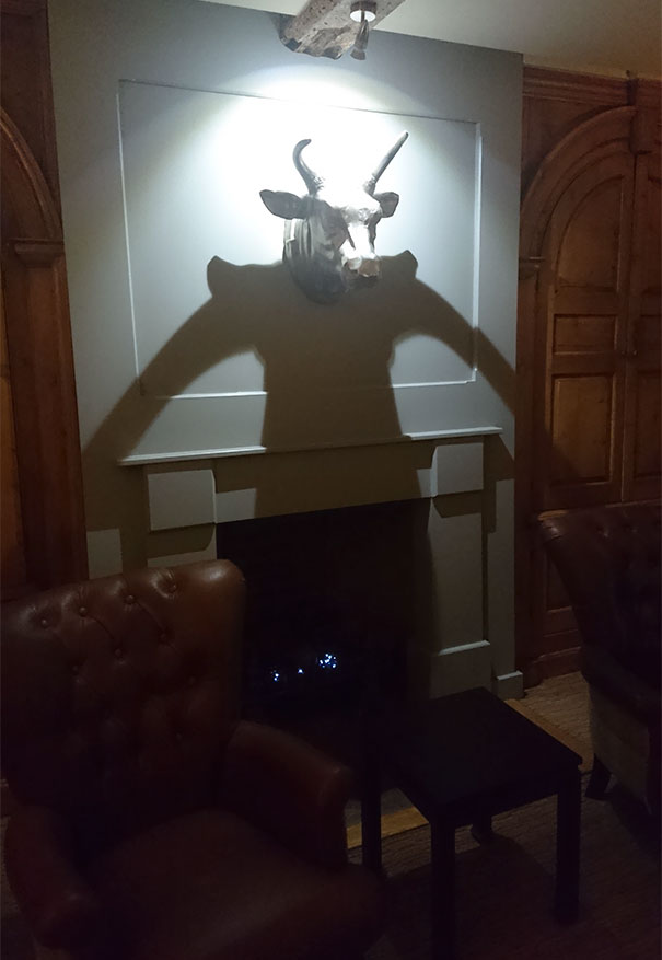 The Shadow From This Mounted Bulls Head Looks Like It Has A Human Body