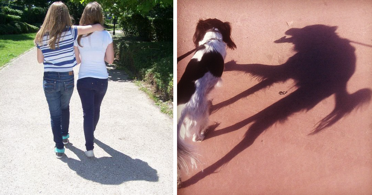 10+ Incredible Shadows That Will Make You Look Twice