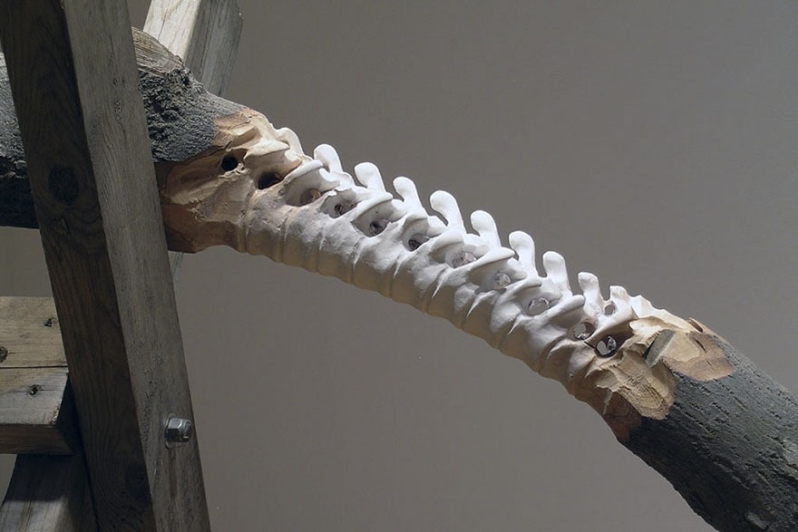 Giant Tree Trunk Carved Down To Frayed Rope By Maskull Lasserre 14