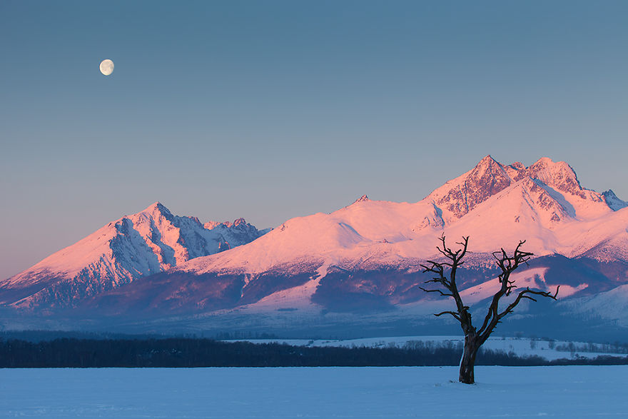 Moonrise Under The Tatras