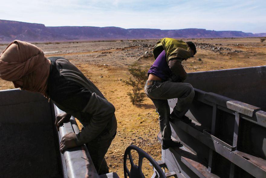 Pastores y ovejas hacen un increíble viaje en un tren de carga por el desierto