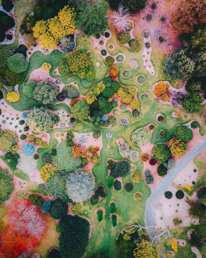 This Aerial Photo Of A Garden Looks Like A Surrealist Painting