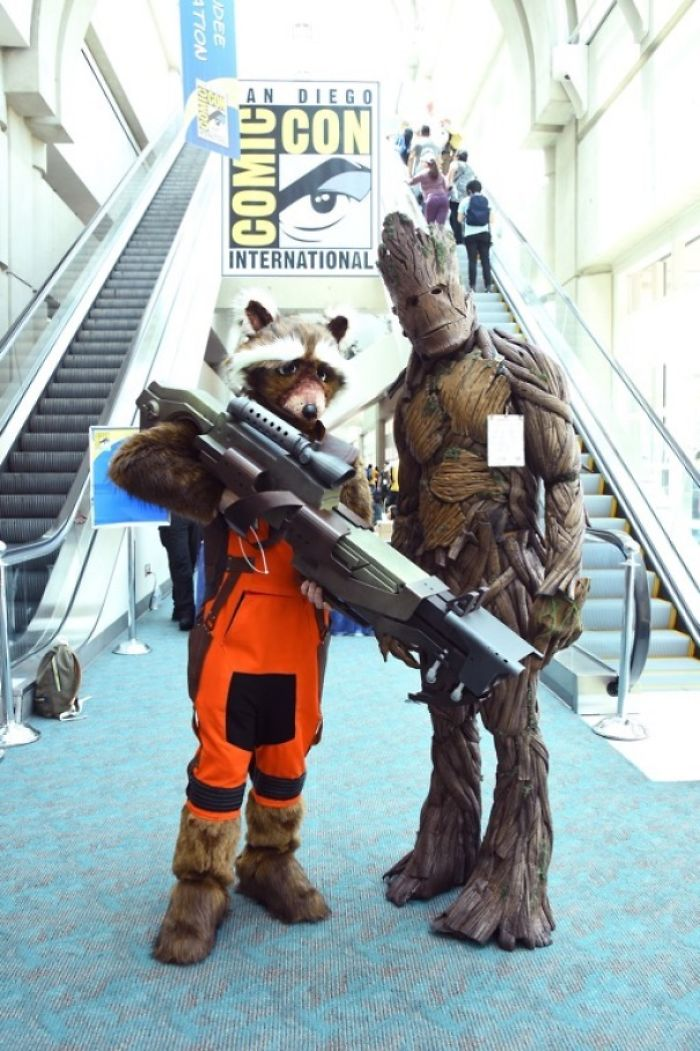 Rocket Raccoon And Groot, Guardians Of The Galaxy