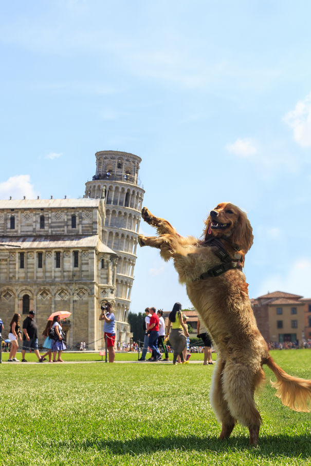 "Oh, Good. Another ""Holding Up The Leaning Tower Of Pisa"" Pic"