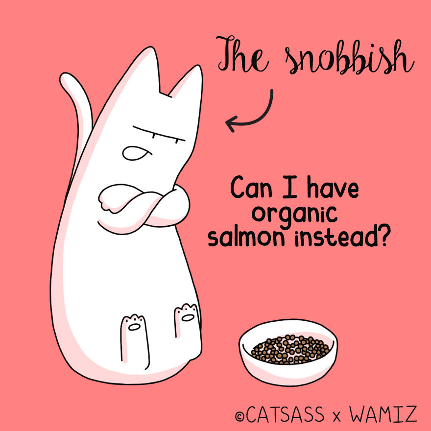 What Kind Of Eater Is Your Cat?