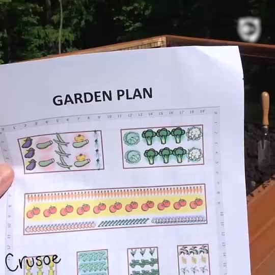 How To Garden With A Wiener