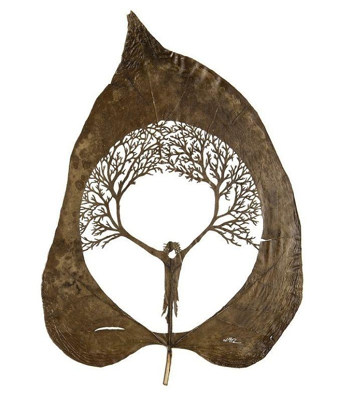 Lorenzo M. Durán's Leaf Art: Evolution
