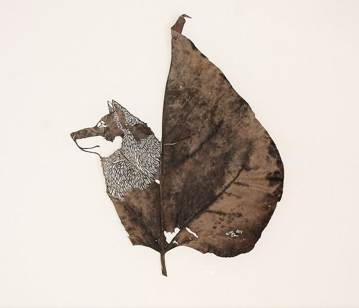 Lorenzo M. Durán's Leaf Art: Evolution