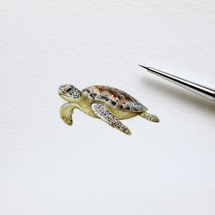 Watercolor Miniatures