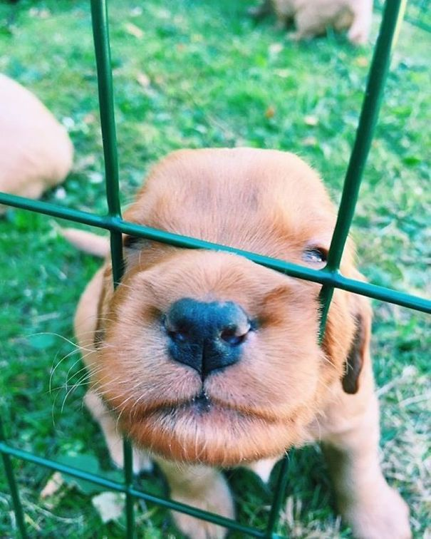 Hi, I'm Stuck
