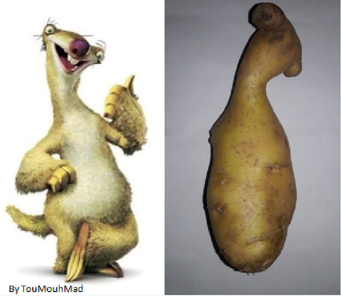 When You Meet Sid From Ice Age Animation In Real Life !! Lol :d