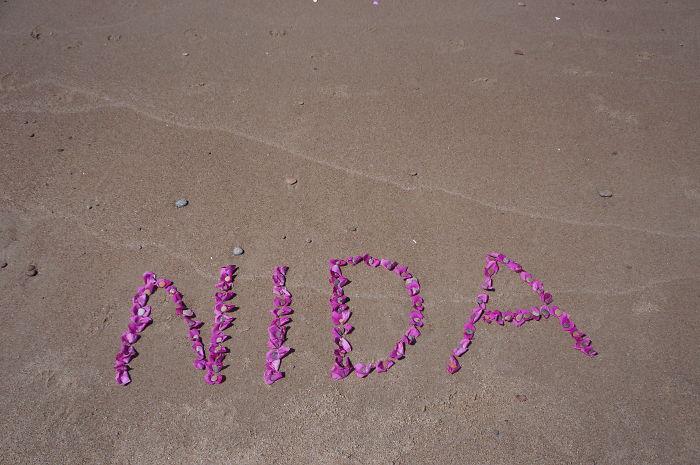 Big Pink Love To Baltic Seaside Town Nida