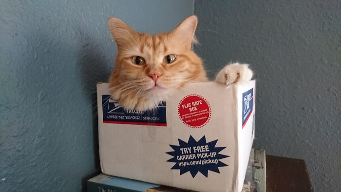 Sox In A Box