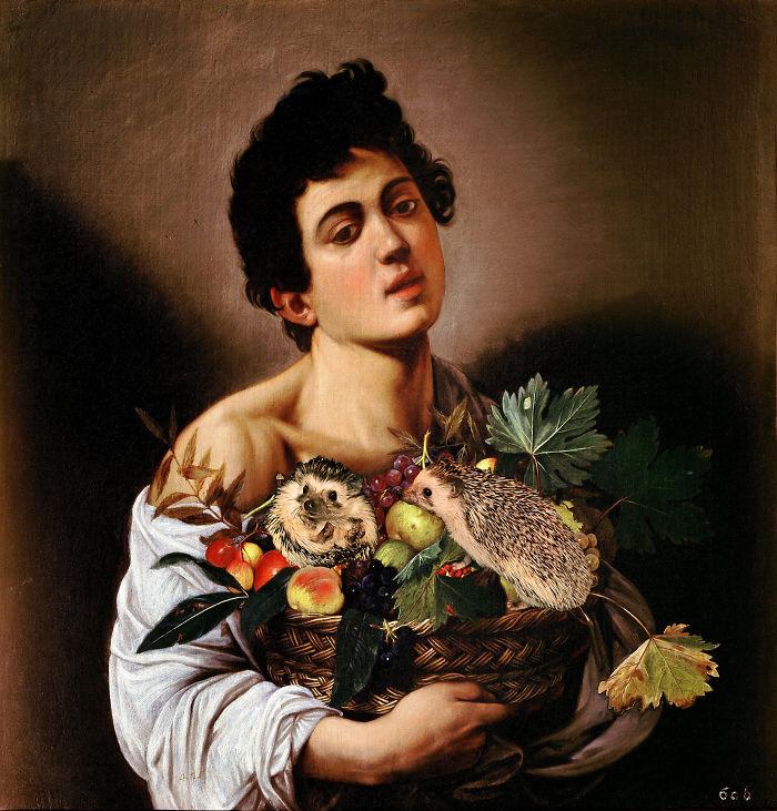 Caravaggio's Boy With Hedgehogs