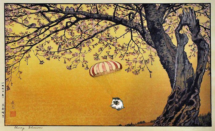 Toshi's Cherry Blossoms And Parachuting Hedgehog
