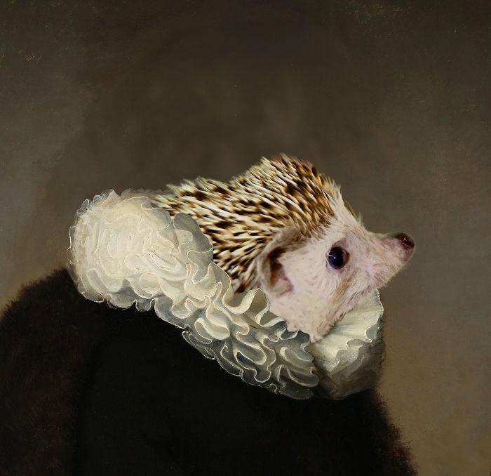 Rembrandt's Hedgehog Noble Portrait