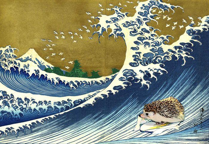 Hokusai's Hedgehog Catching Wave