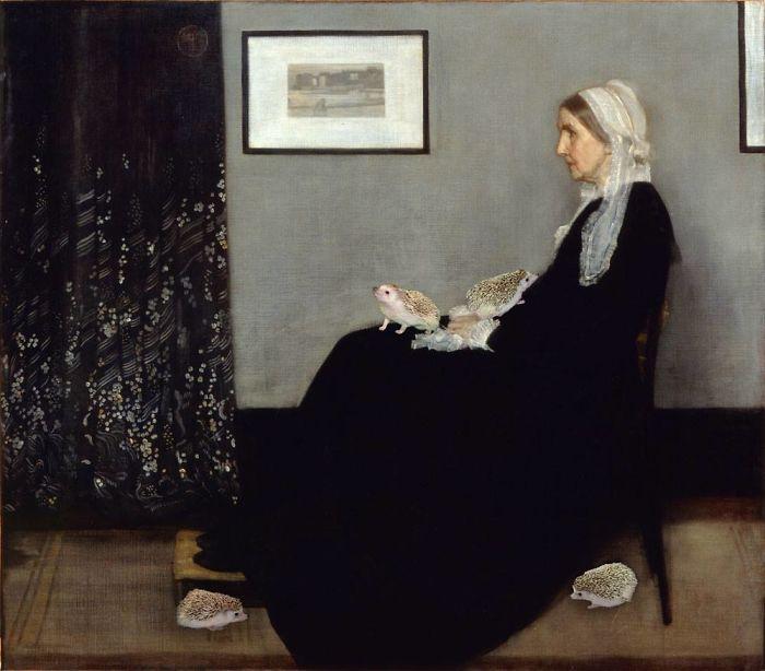Whistler's Hedgie Mom