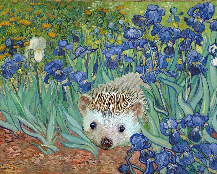 Vincent Van Gogh's 'Irises And Also A Hedgehog'